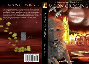 illustrated book cover artwork